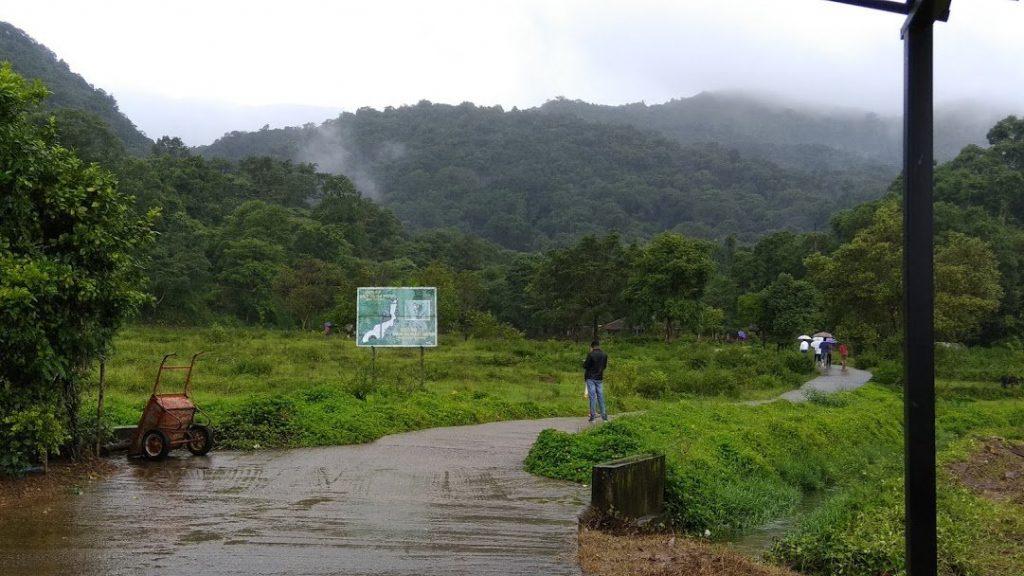 Irpu falls - trek
