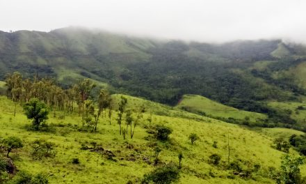 Plan a two days trip from Bangalore to the coffee land of Chikmagalur